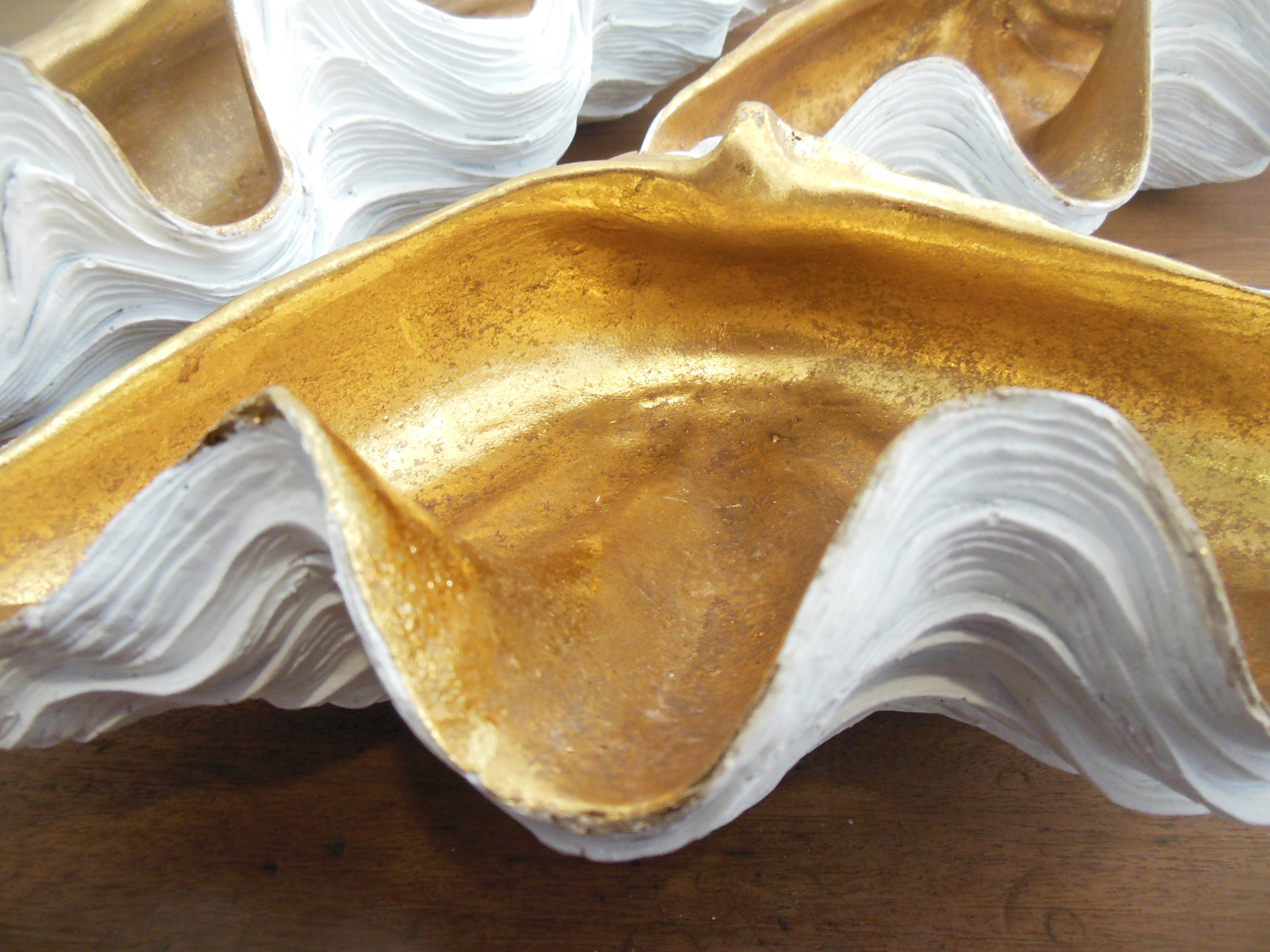 conchas dorado y oro la josa shop